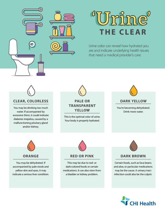 Urine The Clear